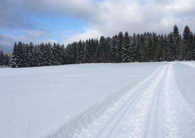 Dreikönigsloipe Mauth-Finsterau