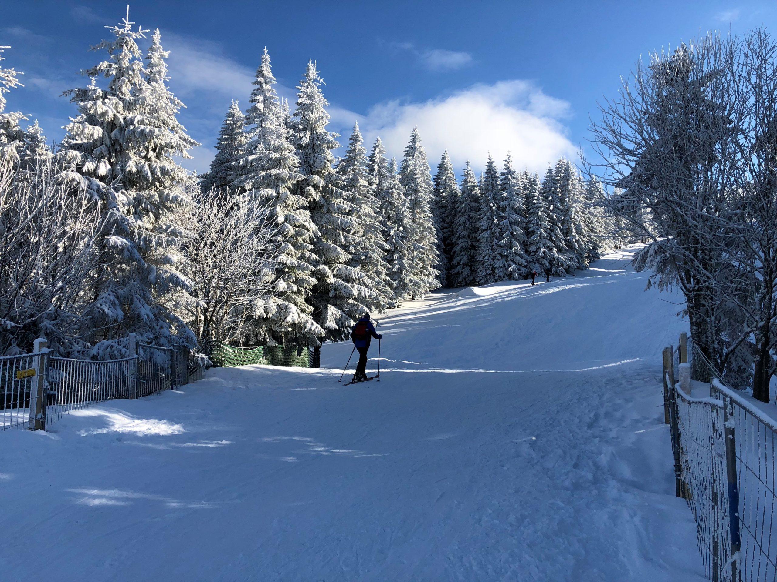 Schneeschuhwandern Dreisesselpiste II Haidmühle